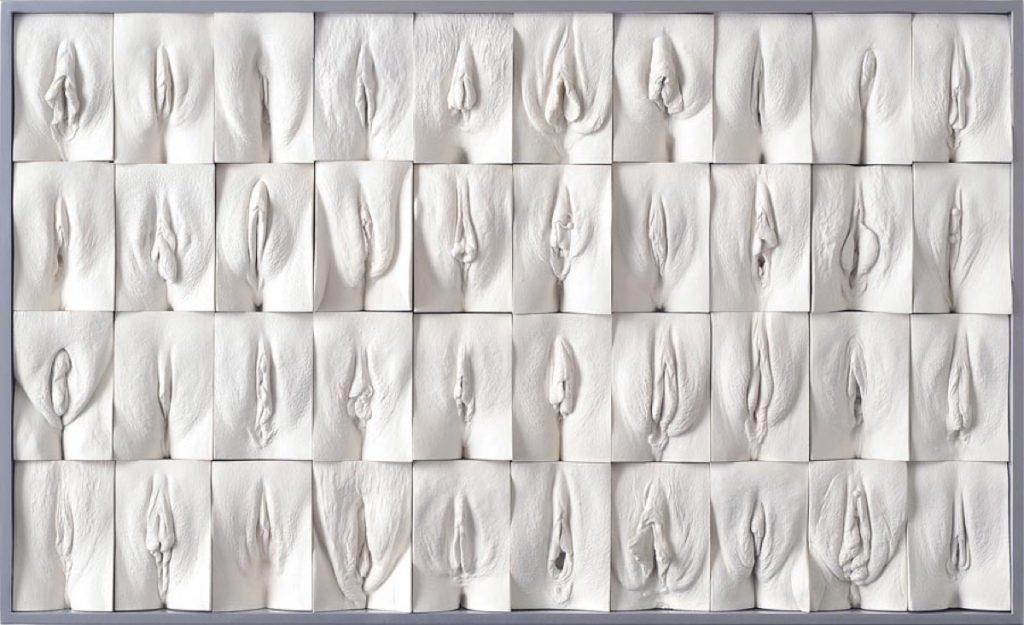 Paneel van The Great Wall of Vagina van Jamie McCartney. Gebruikt met toestemming van de maker.
